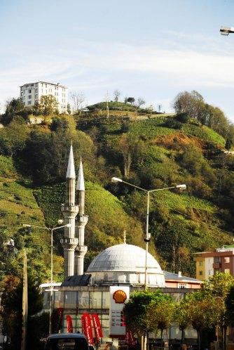 mesquita e cha