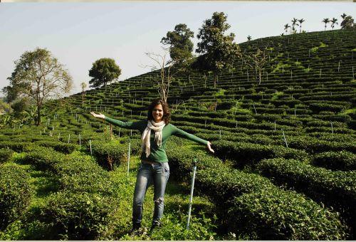 dani-at-tea-farm.jpg