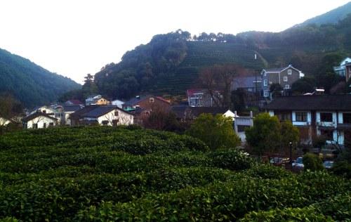 longjing village pq